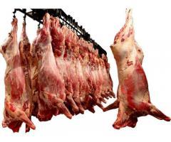 Мясо говядины, птицы, баранины, свинины, отгрузка оптом от 1 тн.